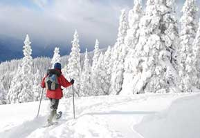 backpacking skier shown in snowy winter scene