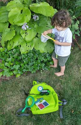 Burke Backyard burke backyard scientist kits - north olympic library system (nols)