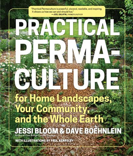 Practical Permaculture for Home Landscapes, Your Community, and the Whole Earth book jacket
